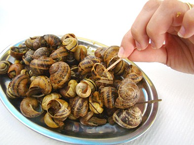 Plate of Snails in the Algarve