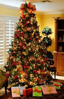 Pick A Christmas Tree