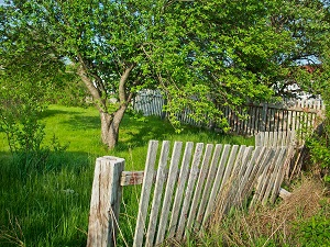 Mend your fences while in Portugal