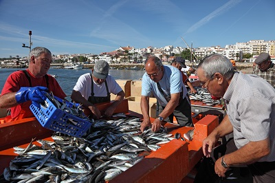 Local Algarve Fish Vendors