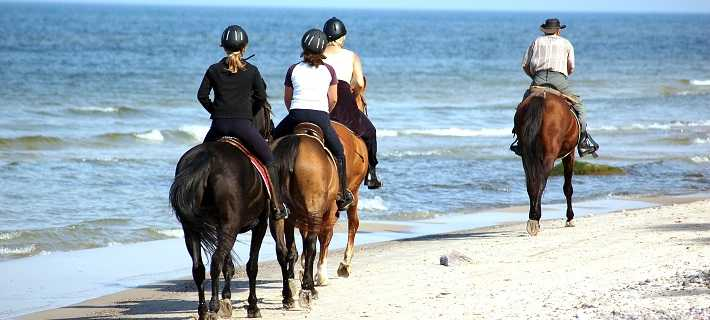 Horse Riding Algarve Portugal