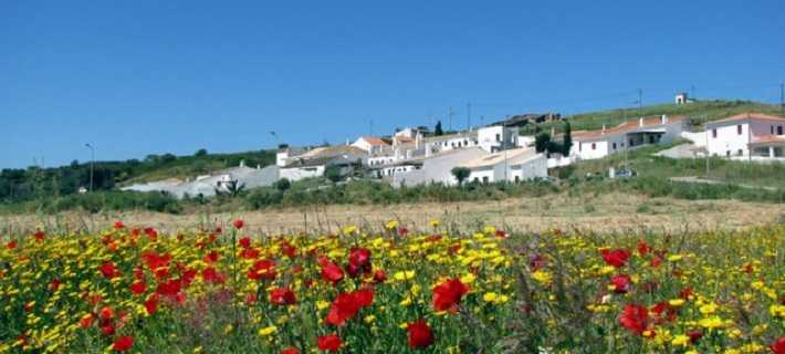 Pedralva village and flowers