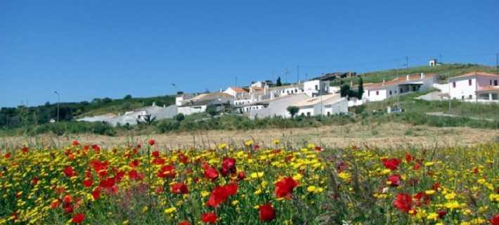 Pedralva village and flowers
