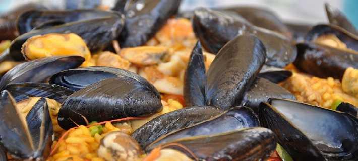 Algarve Black Mussels Plate