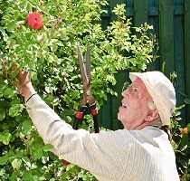 Preparing your garden for home selling
